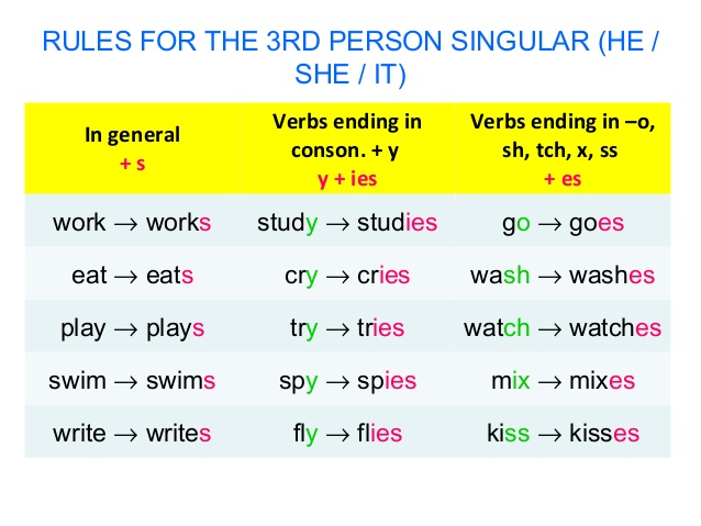 simple prsent, contoh soal simple present, tenses, grammar